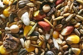 Seeds, Seeds, Seeds (2/3)